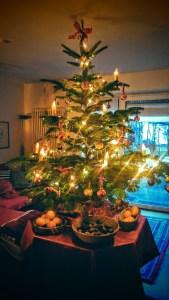 Weihnachtsbaum beim Huhn