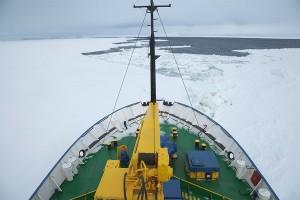 antarctica, kate mccombie, melbourne, photographer