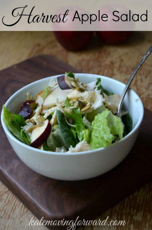 Harvest Apple salad: apples, cheese, pumpkin seeds, turkey