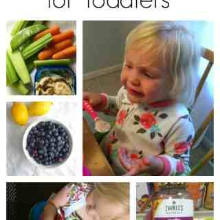 Healthy Eating Tips for Picky Toddlers