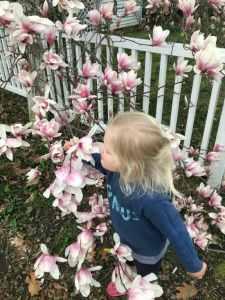 Layla spring walk