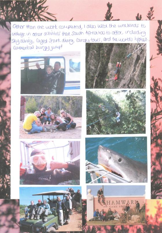 Shamwari Report page 8