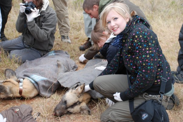 Kate on Conservation with African wild dogs at Shamwari