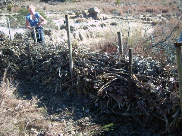 Building an organic dam on Shamwari game reserve