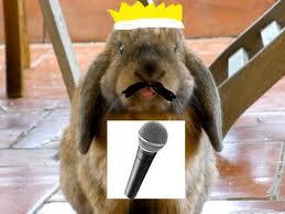 Freddie Mercury rabbit