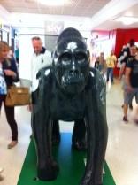 Go Go Gorillas Horatio - Norwich