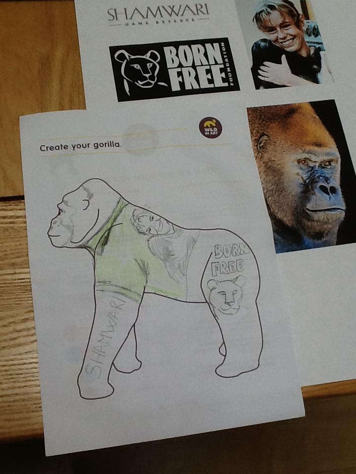 Designing my own Go Go Gorilla for Shamwari Game Reserve