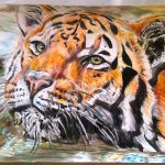 Tiger art by Kate on Conservation