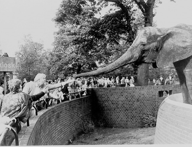 British Zoos — their politics and history: guest post by Shubhobroto Ghosh