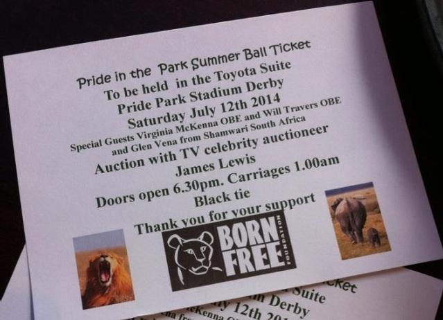 Preparations, Paintings & Pride in the Park