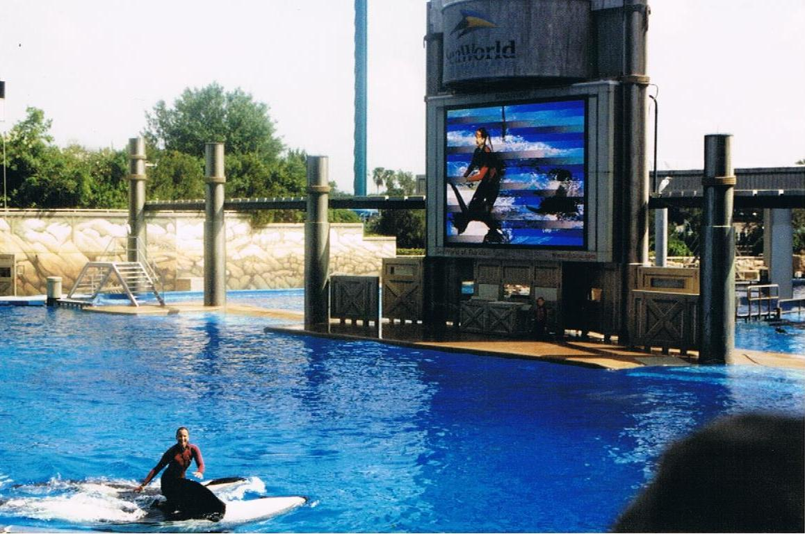 Killer whales in captivity: guest post by Ben Stockwell