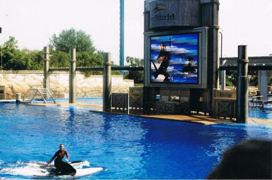Sea world, Florida
