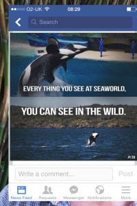 sea world facts