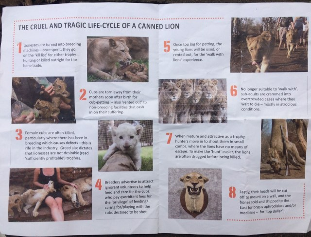 Literature handed out at the Global March for Lions