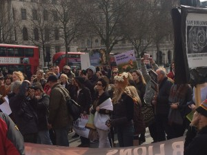 Save our lions - Global march for Lions