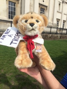 Lion toy - global march for lions