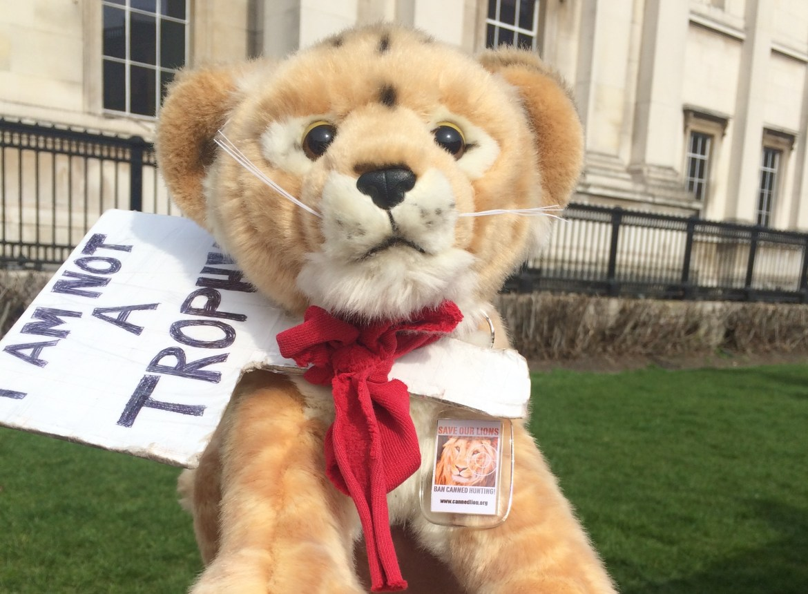 Global March for Lions: Together we CAN ban canned hunting!