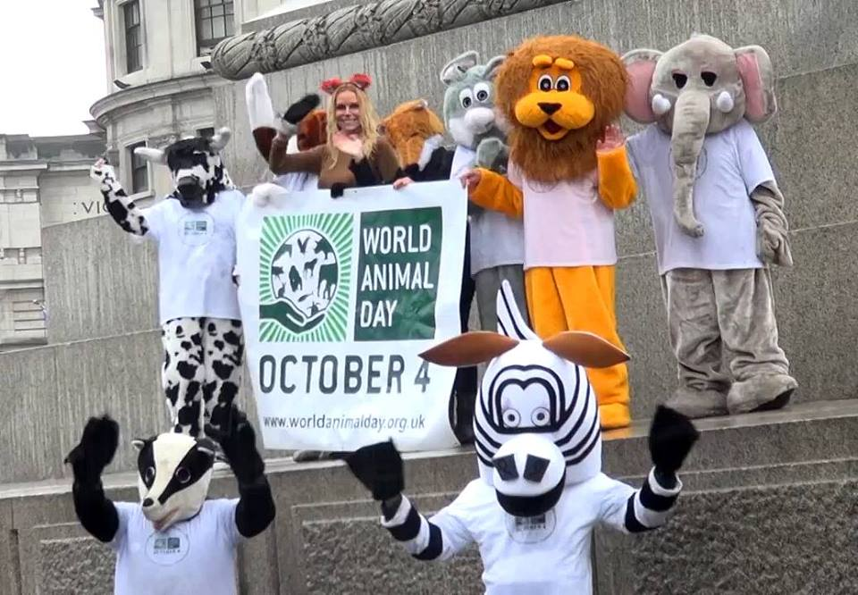 World Animal Day 2015 – bringing us all together!