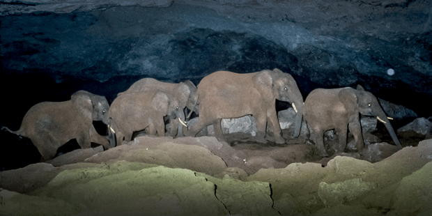 vEcotourism elephant caves