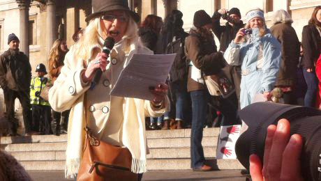 Sharon Bull, Taiji Cove dolphin slaughter protest march