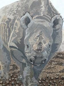 Black rhino close up by Omra Sian