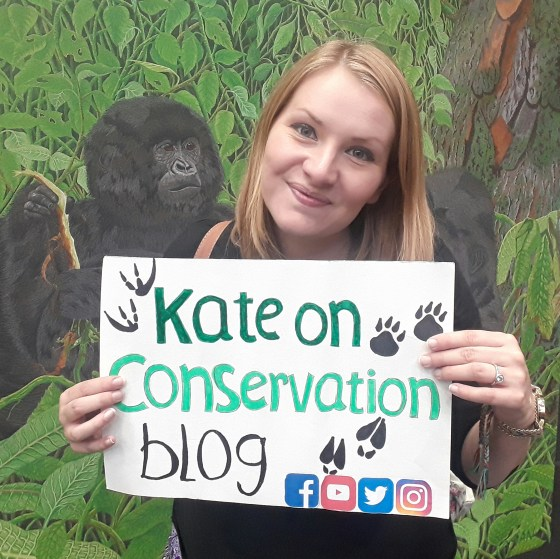 kate on conservation blog