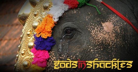 Gods in Shackles film