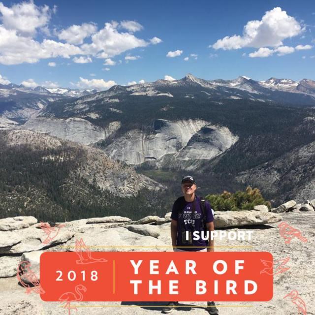 2018 year of the bird adventure Ed
