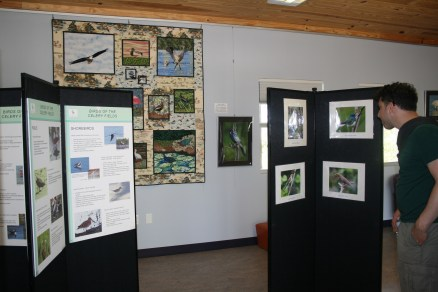 Audubon Sarasota education center - bird spotting with the children
