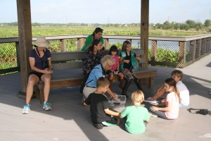 Educational chat with Ann from the Audubon Society