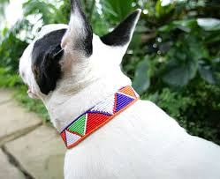 Maasai-beaded-dog-collar