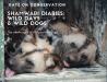 Shamwari diaries week 3 wild days and wild dog title card