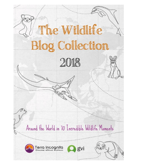 Wildlife-Blog-Collection-2018-book-cover