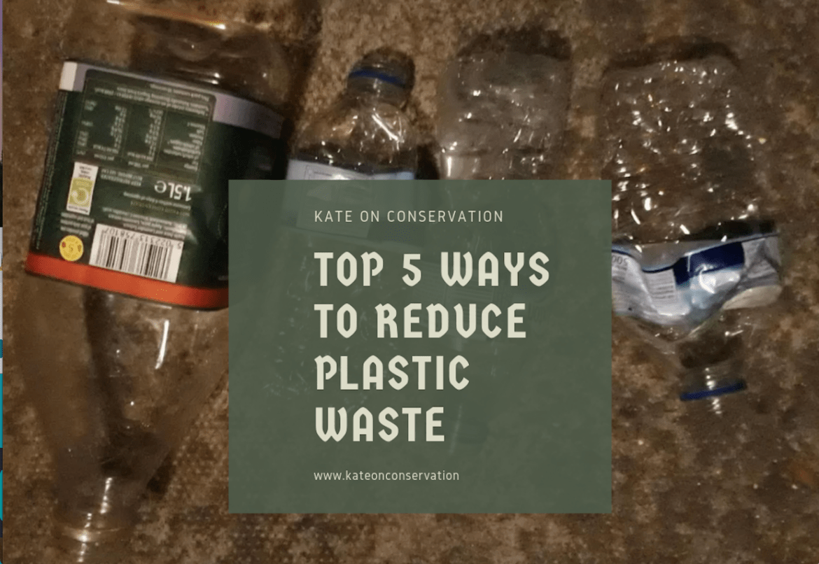 Top 5 ways to reduce plastic waste title card