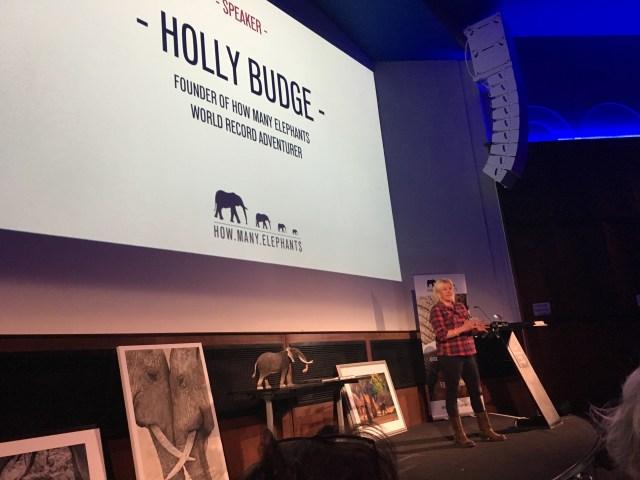Holly Budge, Founder of How Many Elephants