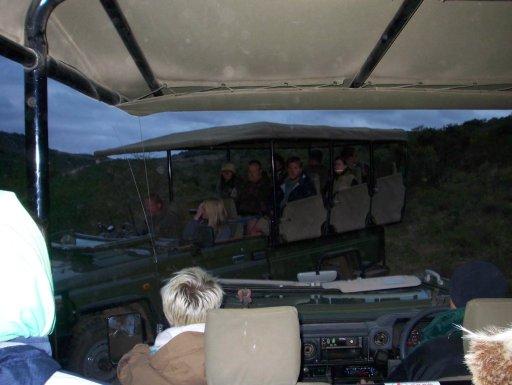 a-cold-and-rainy-game-drive-in-shamwari