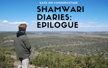 Shamwari-diaries-epilogue-title-card