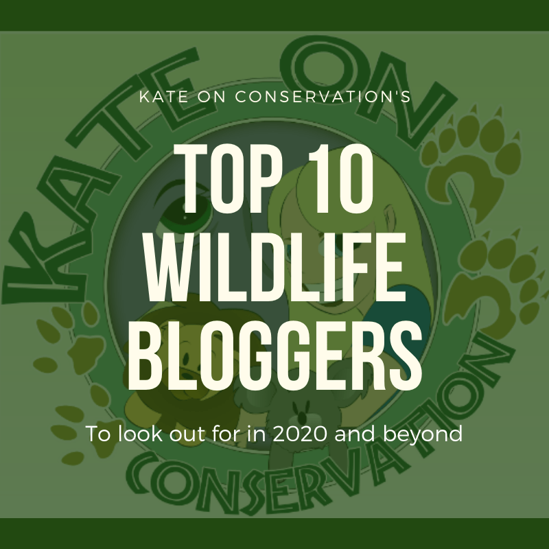 Top 10 wildlife bloggers to look out for in 2020…