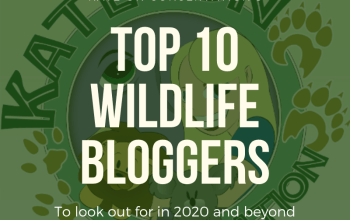 Kate-On-Conservation-top-10-wildlife-bloggers-of-2020