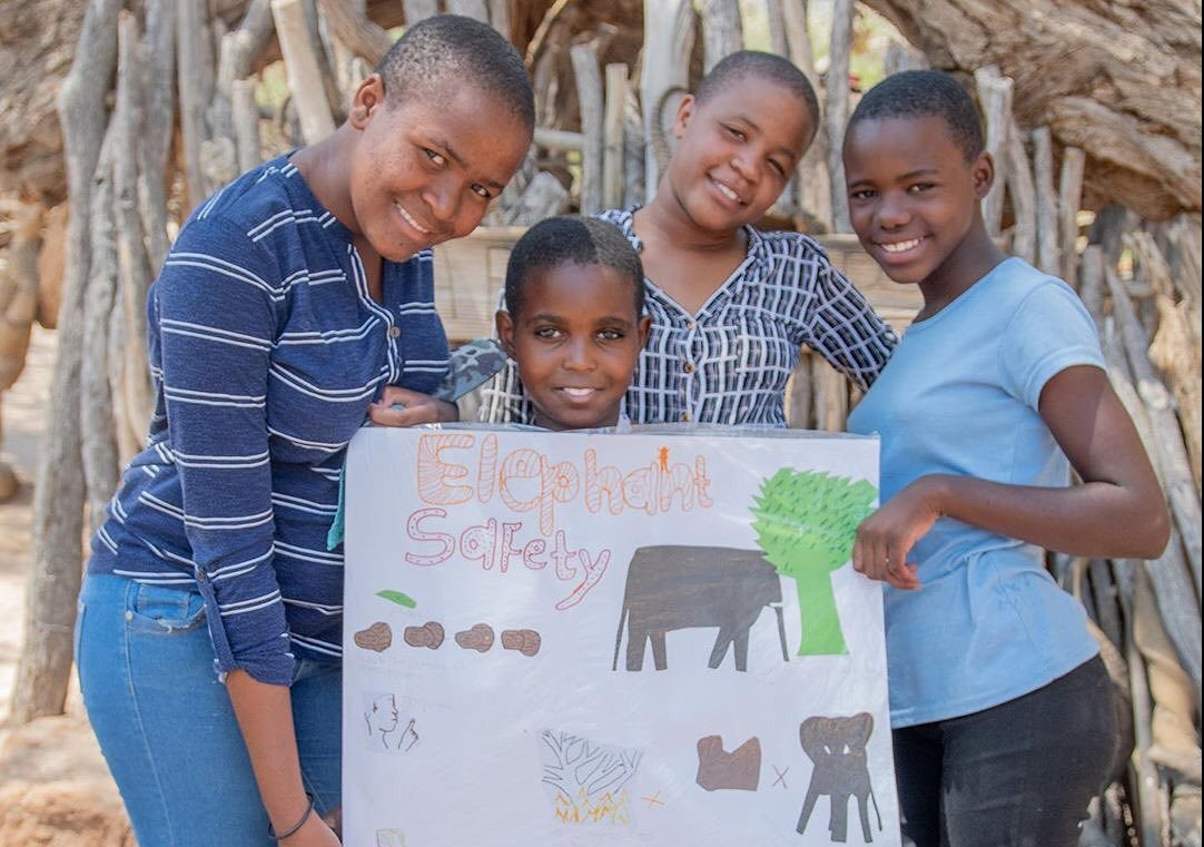 Namibia's PEACE Project is saving elephants (and people)