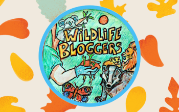 wildlife blogger crowd header