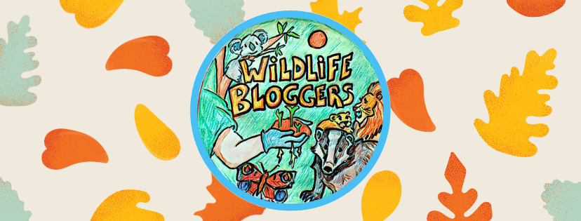 Introducing the Wildlife Blogger Crowd