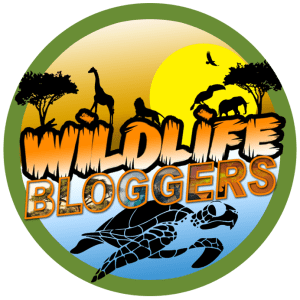 welcome to the wildlife blogger crowd