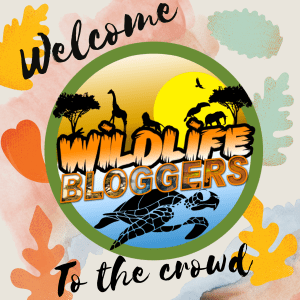 welcome-to-the-wildlife-blogger-crowd-logo