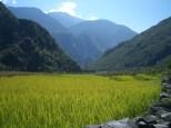 Nepal 2008 2 609
