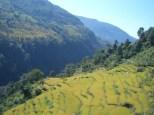 Nepal 2008 3 268