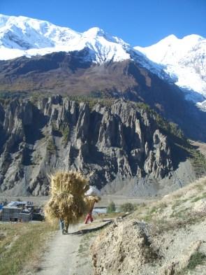 Nepal 2008 663