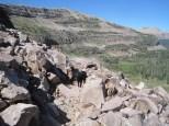 Uintas Rock Creek Basin Sept 2011 040