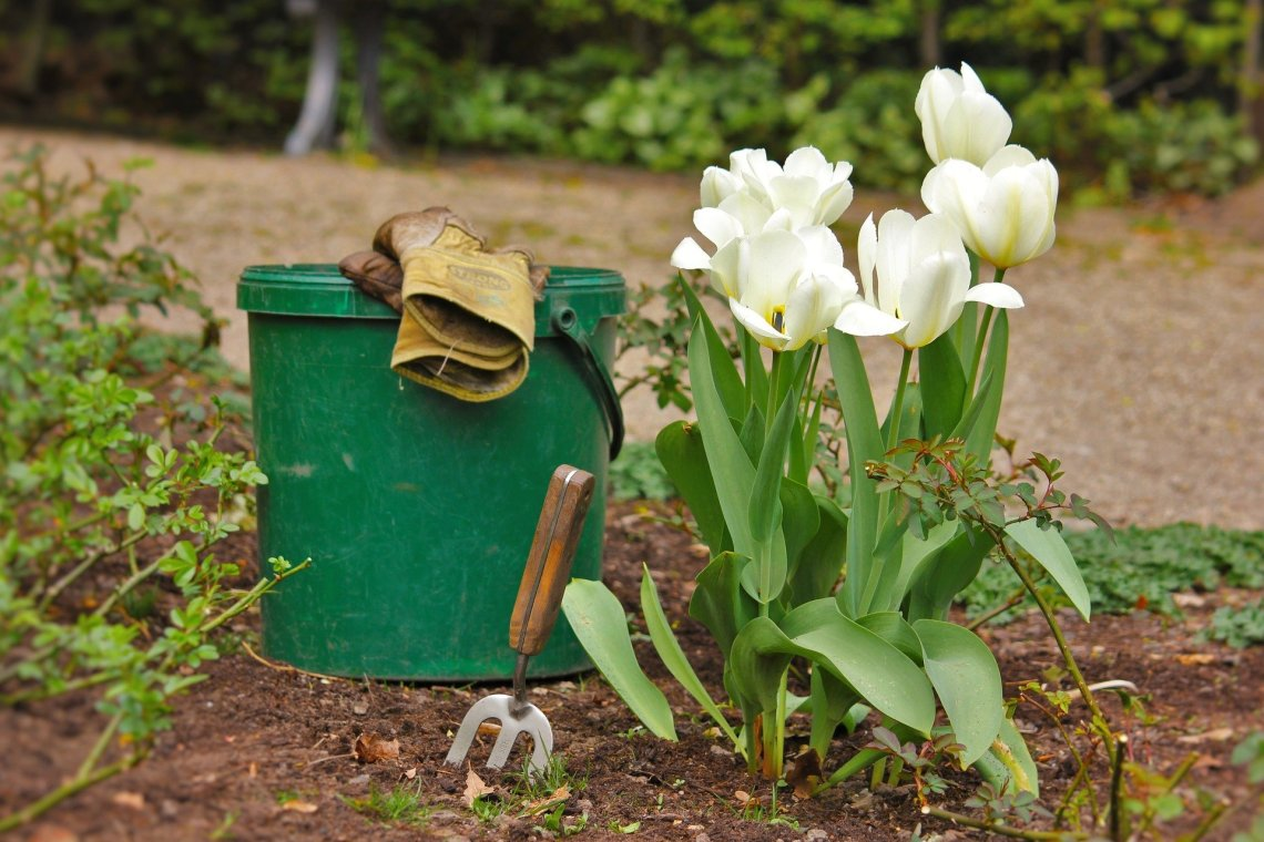 Essential Garden Tools To Make Your Life Easier