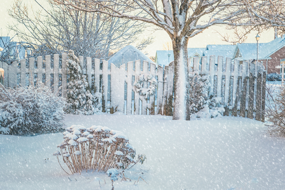 How To Prepare Your Garden For a Harsh Winter